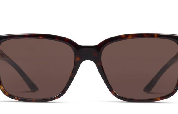 Versace OVE4307 Tortoise